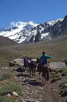 Mendoza:regiòn de Cuyo ARGENTINA