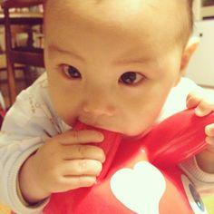 Instagram media saki_mohi - いちばん好きなのはおっぱいだけどね♡ #赤ちゃん#8ヶ月 #ロディ#はむはむ