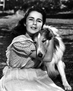 Elizabeth Taylor - Child Star I loved this movie Lassie Come Home... I cried thru the whole thing!!!