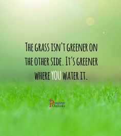 Image result for green grass quote