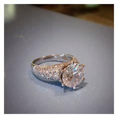 Breathtaking brilliance! #engagement #nelson