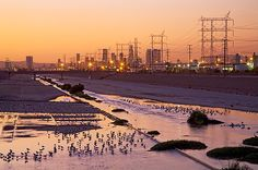 Lost and found: Scenes from the Los Angeles River (View full slideshow)