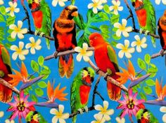 Parrot fabric