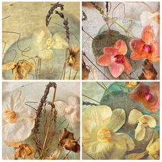 "Set of four ACEO prints 2.5x3.5""  Orchid Floral Art Print - botanical french country cottage chic pastels. $22.00, via Etsy."