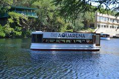 Aquarena Springs, Texas State, San Marcos TX