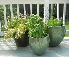 Mais decoração para o seu jardim: use rolhas para marcar a horta    Jardim das Ideias STIHL - Dicas de jardinagem e paisagismo