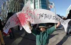Japanese Press Condemns Annual Taiji Dolphin Hunt