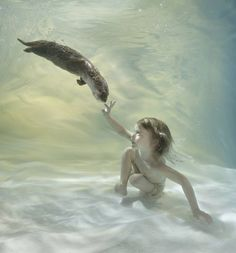 ZENA HOLLOWAY http://www.saatchiart.com/art/Photography-His-friend-the-otter-edition-of-10-2-artist-proofs/416892/2159991/view