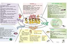 Un jeu-cadre sur le lexique des 5 sens