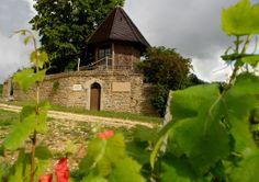 Ce sont 120 vignerons qui invitent les visiteurs à découvrir leur savoir-faire et à rentrer dans le monde du vin.  Source image: Vignerons des Terres Secrètes