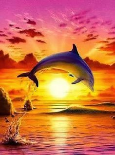 Dolphins at Sunset, fine art canvas print for sale, of dolphins family jumping… Dolphin Images, Dolphin Photos, Dolphin Painting, Dolphin Art, Fantasy Kunst, Fantasy Art, Animals Beautiful, Cute Animals, Dolphins Tattoo