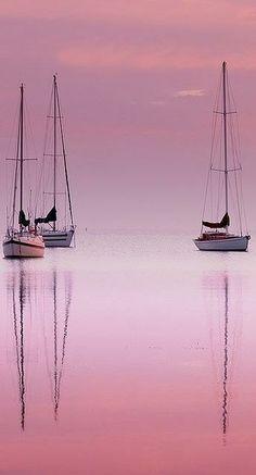 pink horizons