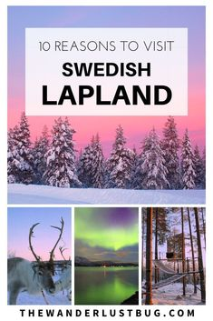 From The Ice Hotel, Tree Hotel And Northern Lights To Husky Sledding, Reindeers and Magical Scenery, Swedish Lapland Is The Perfect Winter Wonderland.