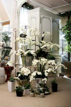 Artificial Orchid display. ..Our showroom