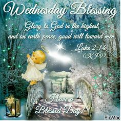Wednesday Blessings. Luke 2:14. Have a Blessed Day!
