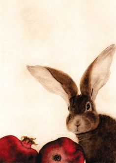 A bunny ... one of my favorite animals. C.C. Barton
