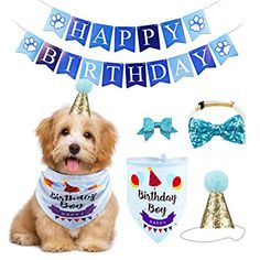 18 My Dogs Ideas Dogs Pet Supplies Pets