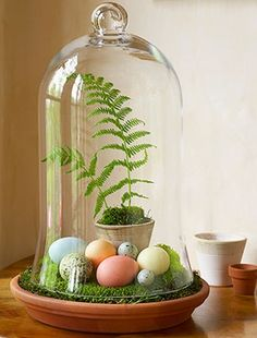 Fill a terracotta saucer with craft-store moss, add a potted fern—plus dyed chicken eggs and plain quail eggs—and cover with a glass bell jar