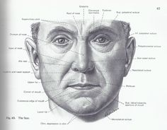 external face - Google 검색