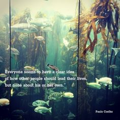 Everyone seems to have a clear idea of how other people should lead their lives, but none about his or her own. ― Paulo Coelho #quotes #sayings #PauloCoelho