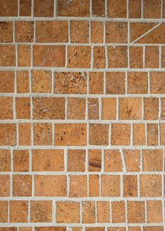 Super Tuscan Cork Wall Tile