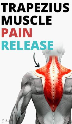 Trapezius pain can be very painful and frustrating. Upper trapezius pain can come out of nowhere when sleeping. Once trigged it can radiate down to the mid and lower back and cause intense neck pain. In this post, I'll show you how to get relief from trapezius pain with neck stretches, and neck self-massage techniques so you can feel better soon. Neck And Shoulder Stretches, Neck And Shoulder Pain, Neck And Back Pain, Neck Stretches, Lower Back Pain Stretches, Muscle Pain Relief, Neck Pain Relief, Trapezius Stretch, Trapezius Workout