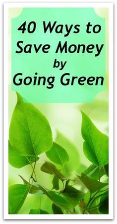 40 Ways to Save Money by Going Green - Natural Holistic Life #green #environment #sustainability #savemoney