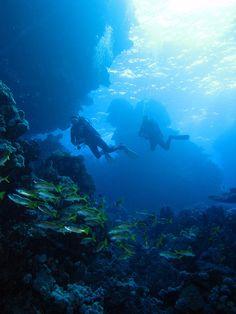 Two divers passing at Halahi Reef, Red Sea, Egypt #SCUBA by Derek Keats, via Flickr