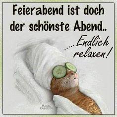 einen schönen Abend und eine gute Nacht und schöne Träume - http://guten-abend-bilder.de/einen-schoenen-abend-und-eine-gute-nacht-und-schoene-traeume-23/