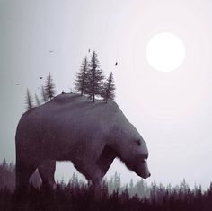 Amazing Surreal Artwork by Dàniel Taylor – Fubiz Media