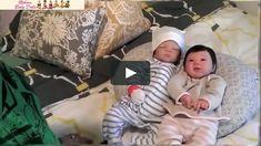 Ashton Drake Dolls vs Reborn Dolls | Baby Dolls for Sale