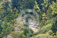 The cliff in Carpathian mountains with geological folds