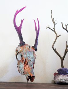 Painted Deer Skull Taxidermy // Urban Inspiration // by MyrandaE