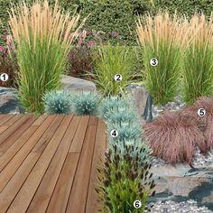 Plants used: 1 _ Pennisetum setaceum rubrum 2 _ Calamagrostis Karl Foerster 3 _ Carex variegated 4 _ Blue Fescue 5 _ Sesleria heufleriana 6 _ Carex comans