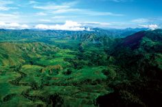 15 Reasons Why Papua New Guinea is Awesome | Gap Year