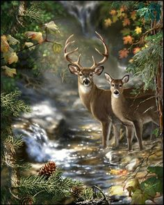 Masterpieces Dona Gelsinger Peek Season Deer Creek Jigsaw Puzzle - 1000 pc