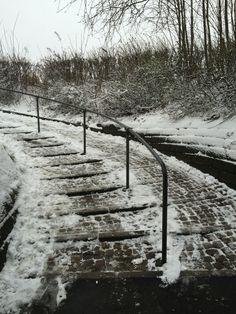 #vinter