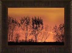 Lac Qui Parle Sunset By Todd Thunstedt 17.5x23.5 Tree Sun... https://www.amazon.com/dp/B0763FDBPW/ref=cm_sw_r_pi_dp_x_9uL3zbJ3V3G0B