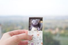 Tiny lavender cat in a floral matchbox Pocket miniature lilac art toy Animal tabby violet cat For kids for BJD MSD Pukifee Blythe by UnderUmbrelland on Etsy https://www.etsy.com/listing/180879275/tiny-lavender-cat-in-a-floral-matchbox
