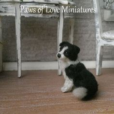 1:12 12th OOAK realistic BORDER COLLIE PUPPY DOG by Paws of Love Miniature