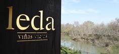 Bodegas Leda website!! One of the best wineries of Spain.
