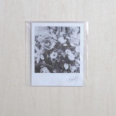森山 大道 Daido MORIYAMA ポラロイド「4区」より 販売価格¥80,000(税別)