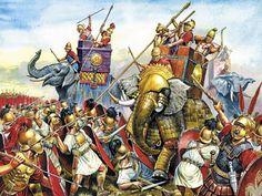 -0275 Bof Beneventium The Pyrrhic War Date 275 BC Location Beneventum (modern Benevento), Campania, Italy Result Tactically inconclusive; Strategic Roman victory Belligerents Roman Republic Epirus Magna Graecia Commanders and leaders Manius Curius Dentatus Pyrrhus of Epirus Strength 17,000 infantry 1,200 cavalry 20,000 infantry 3,000 cavalry 20 elephants Casualties and losses 9,000 killed 11,000 killed