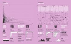 2012 Feltron Annual Report People & Photos Infographics