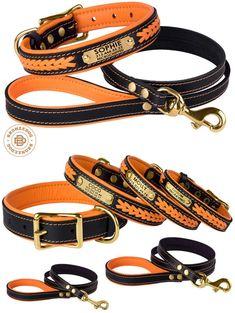 Dog Collar Leash Set Orange Leather Custom Personalized Brass Hardware Soft Padded