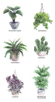 35 Amazingly Pretty Shabby Chic Bedroom Design and Decor Ideas - The Trending House Indoor Garden, Garden Plants, Indoor Plants, Rustic Bedroom Design, Plant Drawing, Bedroom Plants, Green Life, Plant Decor, Houseplants