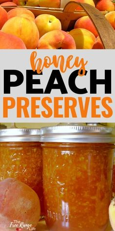 Tired of jams and jellies full of sugar? Heres a honey peach preserves recipe that uses honey as the only sweetener! Includes water bath canning directions to preserve your peach jam all year long! Jelly Recipes, Honey Recipes, Fruit Recipes, Peach Jam Recipes, Water Recipes, Peach Preserves Recipe, Peach Jam Recipe With Honey, Simple Jam Recipe, Sugar Free Peach Jam Recipe