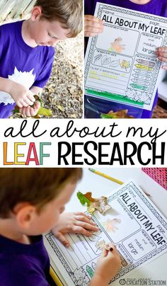 Creating experiences to teach scientific investigation, like this leaf science activity, allows your learners to make observations about data they collect. Easy Science Experiments, Science Lessons, Teaching Science, Science Fun, Elementary Science, Science Classroom, Elementary Education, Autumn Activities, Science Activities