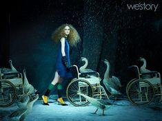 Westory 2014 A/W/shenchinlun