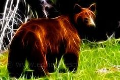 fractal animals -